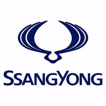 صورة للفئة  سانج يونج  قطع غيار سيارات